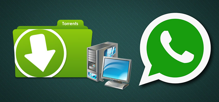 torrent-whatsapp-pk
